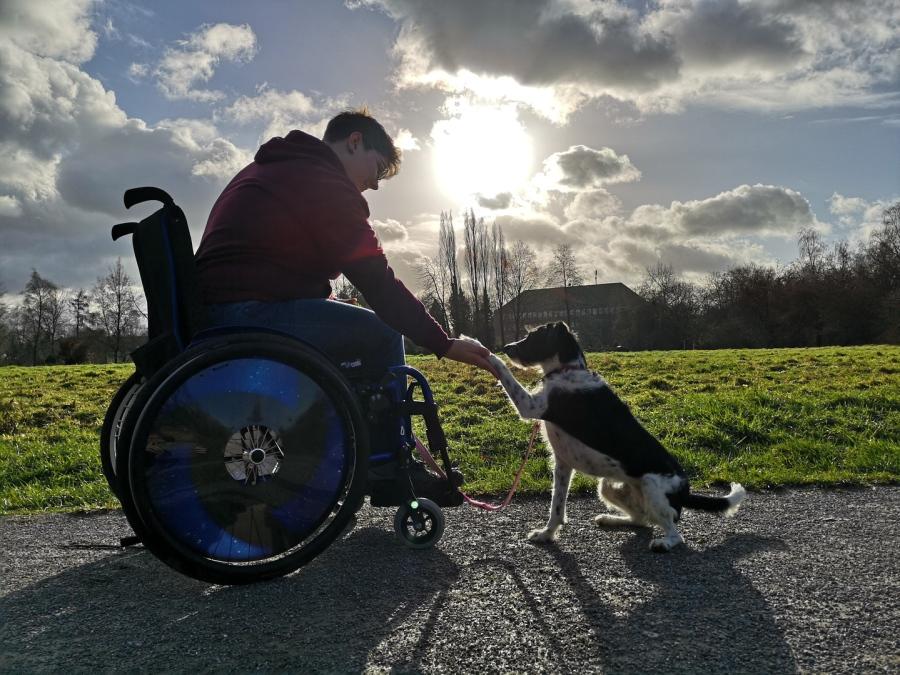 Hundetrainerin und Hundepsychologin der Hundeschule Traum-Hunde im Rollstuhl beim Behindertenbegleithund Training mit ihrem Tierschutzhund in Gladbeck
